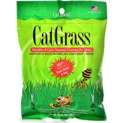 Cat Grass Plus Gimb Cat Grass 150Gm Tub