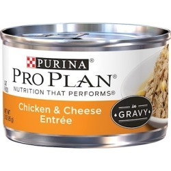 Purina Pro Plan Savor Adult Chicken and Cheese Entree in Gravy Canned Cat Food 3-oz, case of 24