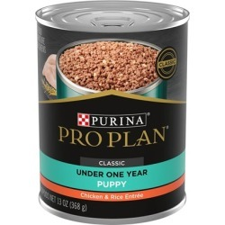 Purina Pro Plan Focus Puppy Chicken and Rice Canned Dog Food 13-oz, case of 12