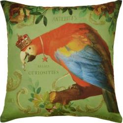 Curiosities Cushion Parrot