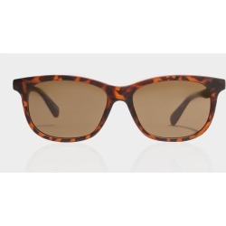 Local Supply - Port TLM3 Polarised Rectangular Sunglasses in Tortoise found on MODAPINS from glue store for USD $61.63