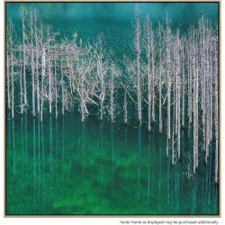 Forest Vert Canvas Print With Floating Frame