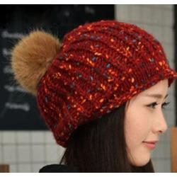 Costbuys Winter Beanies Knit Women s Hat Winter Hats For Women Ladies Beanie  Girls Skullies Caps Wool df8f619472
