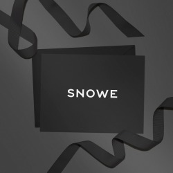 Digital Gift Card found on Bargain Bro from SNOWE for USD $380.00