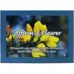 Set of Bach Flower Cards English 39 pc by Flower Essence Services