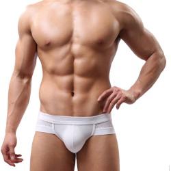 Costbuys  Summer Mens Sexy Underwear Low Waist Cotton Briefs Underpants for Men - White / XL