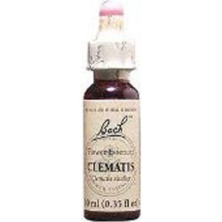 Flower Essence Clematis 20 ML by Bach Flower Essences
