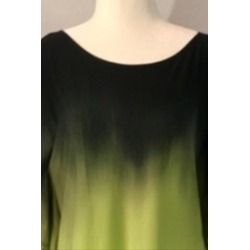 Lime/black Ombre Tunic found on Bargain Bro Philippines from Shoptiques for $69.00