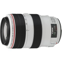 Canon EF 70-300mm f/4-5.6L IS USM Lens found on Bargain Bro India from eGlobal Central UK for $1084.98