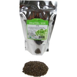 Chia Sprouting Seeds - Chia Sprout Seed for Sprouts / Pet Refill- 1 Lb