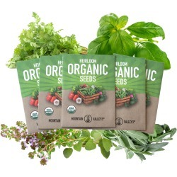 Organic Italian Herb Garden Seed Collection - 5 Non-GMO, Seed Packets