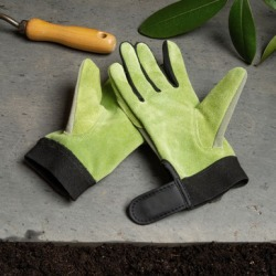 Sage Green Lady's Gloves - Medium found on Bargain Bro Philippines from Garrett Wade for $16.25