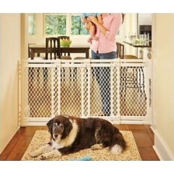 MyPet Plastic Extra-Wide Pet Gate for Dogs & Cats found on Bargain Bro India from Chewy.com for $49.99