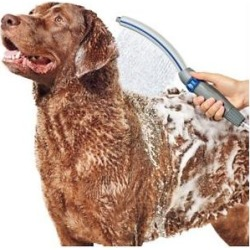 Waterpik Pet Wand Pro Dog Shower Attachment, 1.8 GPM found on Bargain Bro India from Chewy.com for $36.97