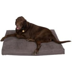 Pet Support Systems Orthopedic Pillow Dog Bed, Charcoal Gray, Large found on Bargain Bro from Chewy.com for USD $79.76