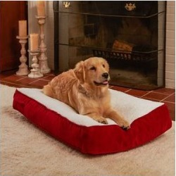Happy Hounds Bailey Rectangle Pillow Dog Bed w/ Removable Cover, Crimson, X-Small found on Bargain Bro from Chewy.com for USD $27.89