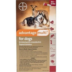 Advantage Multi for Large Dogs 20.1-55 Lbs (Red) 6 Doses found on Bargain Bro Philippines from Canadapetcare.com for $77.61