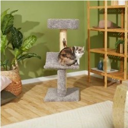 Frisco 37-in Real Carpet Wooden Cat Tree, Gray found on Bargain Bro from Chewy.com for USD $37.23