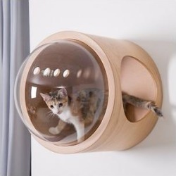 MyZoo Spaceship Gamma Wall Mounted Cat Wall Shelf, Oak, Right-Open found on Bargain Bro Philippines from Chewy.com for $174.00
