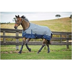 Saxon 600D With Gusset Standard Neck Lite II Horse Blanket, Gray/Navy, 75-in found on Bargain Bro India from Chewy.com for $57.99