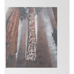 John Muir-and Into The Forest I Go To Lose My Mind And Find My Soul Bed Throw Blanket by Anthony Londer - 51