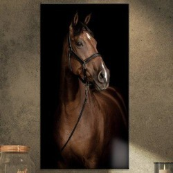 East Urban Home 'Horse Portrait' Photographic Print on Wrapped Canvas Metal in Black/Brown, Size 32.0 H x 16.0 W x 1.0 D in   Wayfair found on Bargain Bro Philippines from Wayfair for $48.99