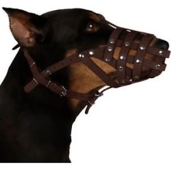CollarDirect Leather Dog Muzzle for Dalmatian & Setter, Brown, Large found on Bargain Bro Philippines from Chewy.com for $23.99