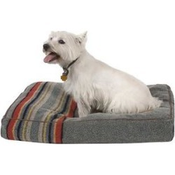 Pendleton Yakima Camp Pillow Dog Bed w/Removable Cover, Heather Green, Medium found on Bargain Bro from Chewy.com for USD $142.87