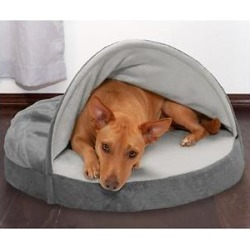 FurHaven Microvelvet Snuggery Memory Top Cat & Dog Bed w/Removable Cover, Gray, 26-in found on Bargain Bro India from Chewy.com for $35.99