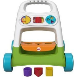 Fisher-Price Infant Busy Activity Walker, Multicolor