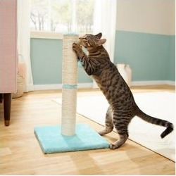 Frisco 21-in Sisal Cat Scratching Post with Toy, Aqua found on Bargain Bro Philippines from Chewy.com for $13.29