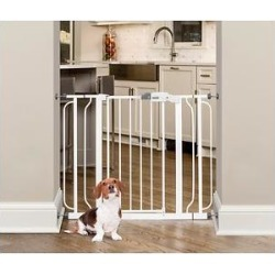 Regalo Easy Step Extra Wide Walk-Through Gate, 30-in found on Bargain Bro Philippines from Chewy.com for $43.98