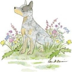 East Urban Home Jack The Australian Cattle DogCanvas, Size 26.0 H x 26.0 W x 0.75 D in | Wayfair JSY97-1PC3-26x26 found on Bargain Bro Philippines from Wayfair for $78.99