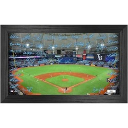 Tampa Bay Rays Highland Mint 12'' x 20'' Facsimile Signature Field Framed Photo found on Bargain Bro from Fanatics for USD $45.59