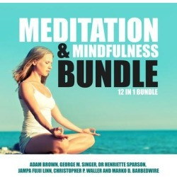 Meditation and Mindfulness Bundle: 12 in 1 Bundle - Download