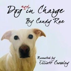 Dog not in Charge - Download