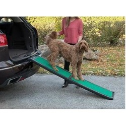 Pet Gear Bi-Fold Dog & Cat Ramp with SupertraX, Black/Green