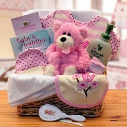 BEST DEALS Gift Basket Organic New Baby Basics Gift Baskets – Pink