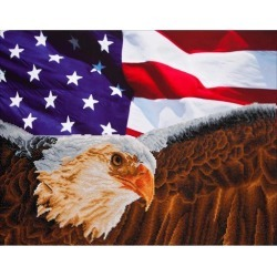 "Diamond Dotz Diamond Embroidery Facet Art Kit 25.5""X35.5""-Bald Eagle & Flag"