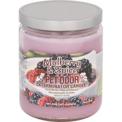 Pet Odor Exterminator Mulberry & Spice Deodorizing Candle, 13-oz jar found on Bargain Bro India from Chewy.com for $8.99