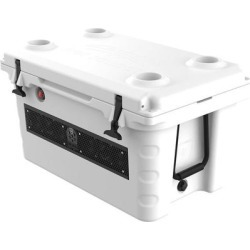 Wet Sounds SHIVR-55-WHT White Cooler Speaker System found on Bargain Bro India from Crutchfield for $799.99