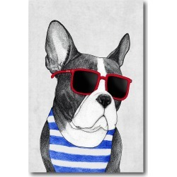 Cool Frenchie 12