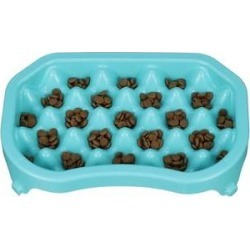 Neater Pets Standard Non-Skid Plastic Slow Feeder Dog & Cat Bowl, Aquamarine, 6-cup found on Bargain Bro Philippines from Chewy.com for $19.99