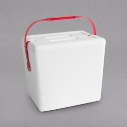 Small Foam Cooler with Handle - 11 3/4