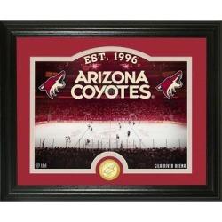 Arizona Coyotes Highland Mint 13