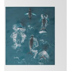 Bed Throw Blanket | Humpback Whales In The Arctic Ocean - Wildlife Aerial by Michael Schauer - 51