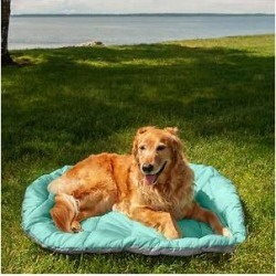 FurHaven Trail Pup Packable Stuff Sack Travel Pillow Dog Bed, Aqua & Granite Gray, Large found on Bargain Bro Philippines from Chewy.com for $26.56