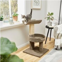 Frisco 30-in Real Carpet Wooden Cat Tree, Gray