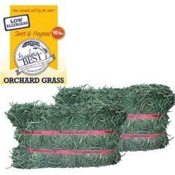 Grandpa's Best Orchard Grass Hay Small Pet Food, 10-lb mini bale found on Bargain Bro Philippines from Chewy.com for $22.99