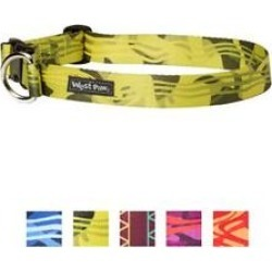 West Paw Outings Large Dog Collar, Green Groove found on Bargain Bro India from Chewy.com for $10.07